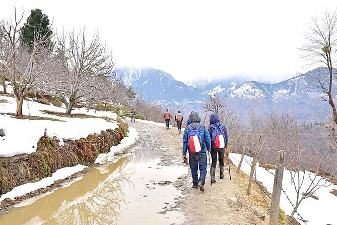 Snow Trek In Manali