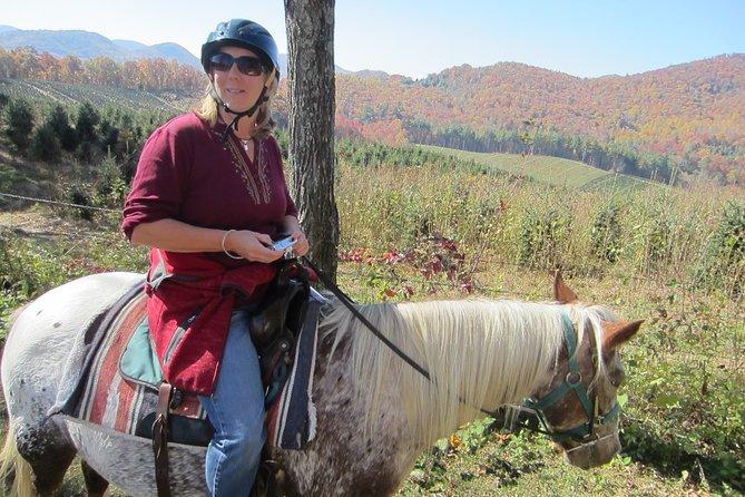 Guided Horseback Riding Adventure on the Flame Azalea Trail
