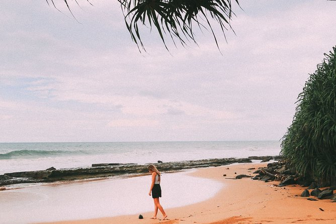Bentota Beach Bliss – One Day Tour