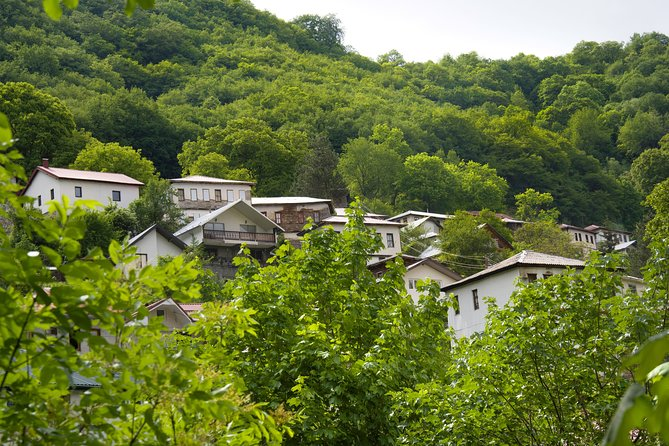 Go rural to Lazaropole and Gari from Ohrid