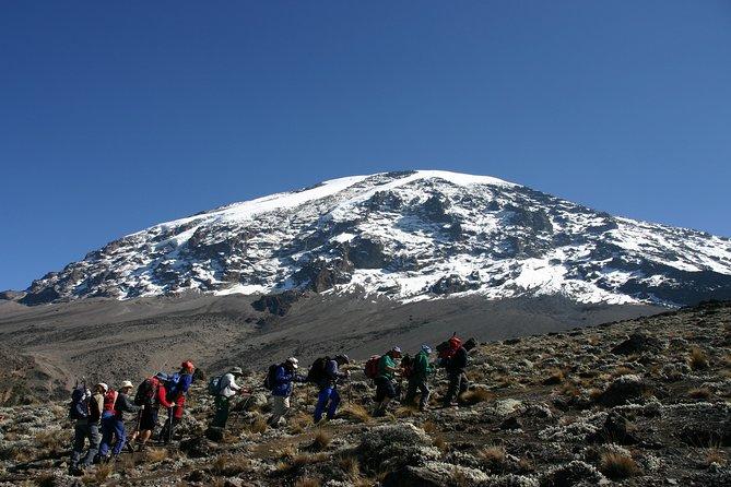 Mt. Kilimanjaro 5 Days Trek - Marangu Route