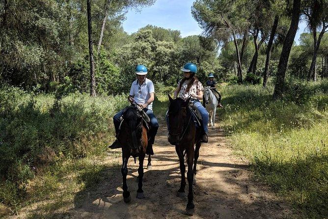 Horseback Riding in Parque Doñana, Sevilla, Spain