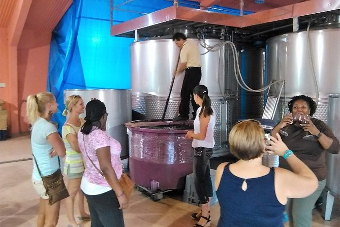 Wineries Day Tour from Madrid with Hotel Pickup and Lunch