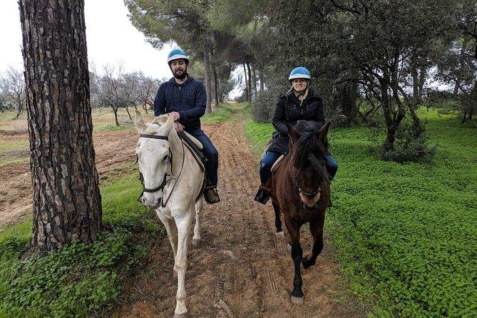 Horseback Riding Exclusive for Couples, in Parque Natural Doñana, Sevilla