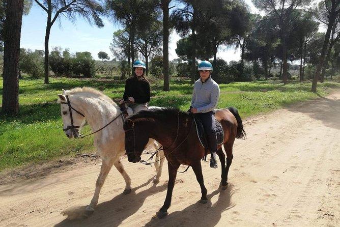 Horseback Riding for 2 people in Parque Natural Doñana, Sevilla