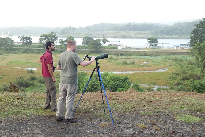 Guides with scopes for Bird watching