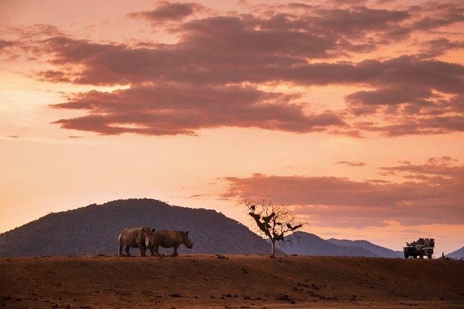4 Days Kruger National Park Safari Tour