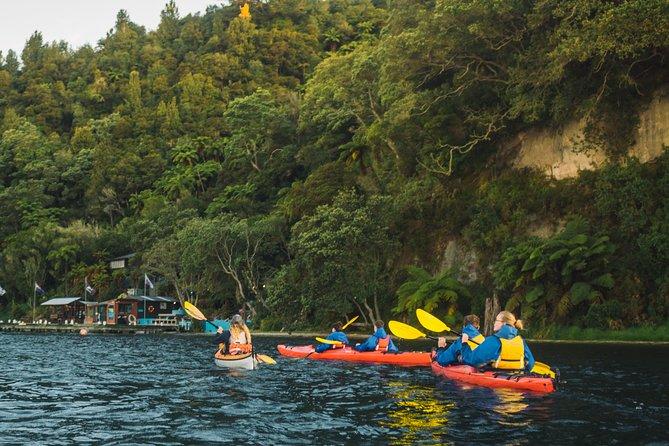 Rotorua: Lake Rotoiti Starlight Kayaking Tour
