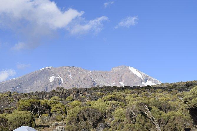 Mt. Kilimanjaro 8 Days Trek - Lemosho Route