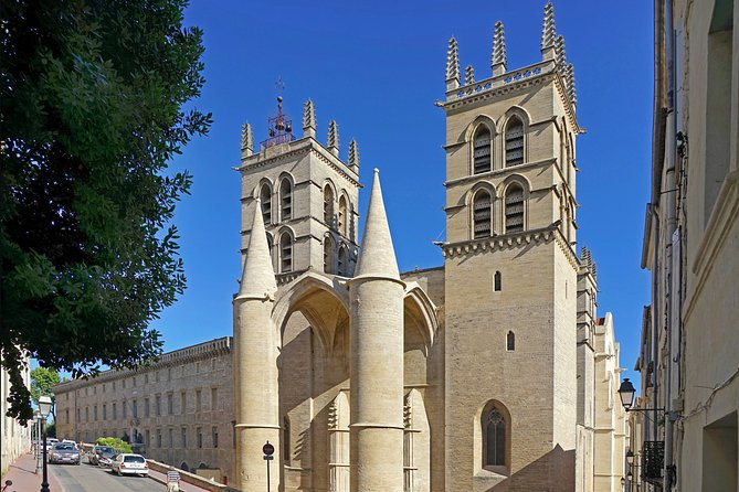 Private 2-hour Walking Tour of the Historical Center of Montpellier