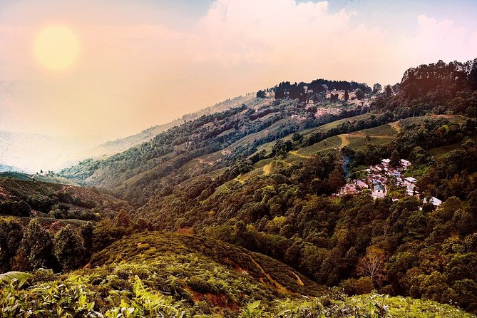 Romantic tour in Darjeeling