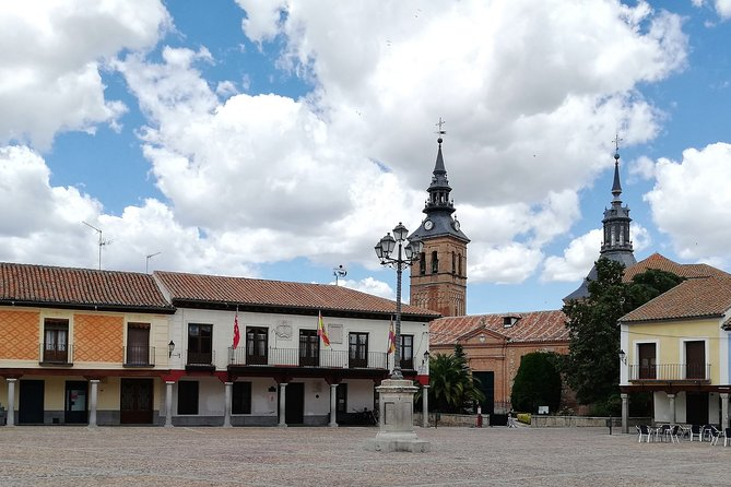 Wine tourism in Navalcarnero: Cultural visit and wineries + Wine tasting D.O Madrid