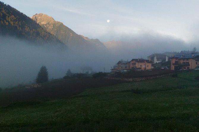 The secrets of an alpine oasis (Lago di Barco, Val di Sole)