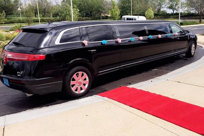 Private 2-Hour Chicago Sightseeing Tour by Luxury Stretch Limo
