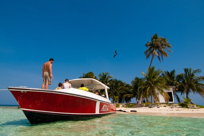 Snorkel the Perfect Tropical Isle Silk Caye with Turtles, Rays and Sharks