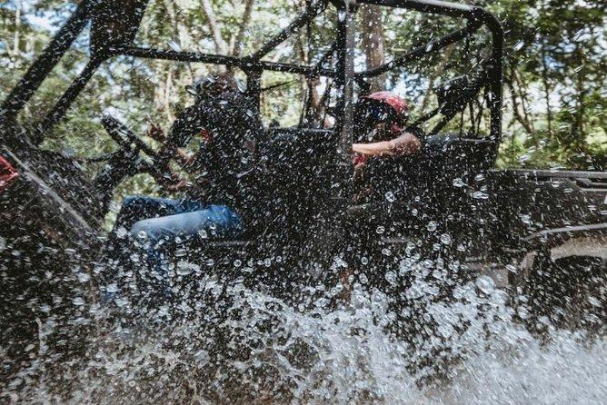 Jungle RZR Tour in La Sierra Madre