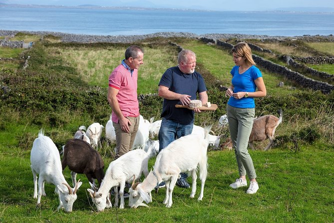 Food, heritage & cultural tour Inishmore, Aran Islands. Private guided. 5 hours.
