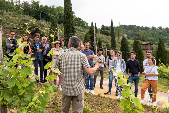 Wine Tasting and Guided Tour of the Le Corne Organic Farm