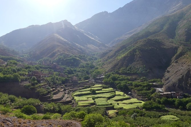 Day Trek from Marrakech To The Atlas Moutains & Asoual Summit 2700m