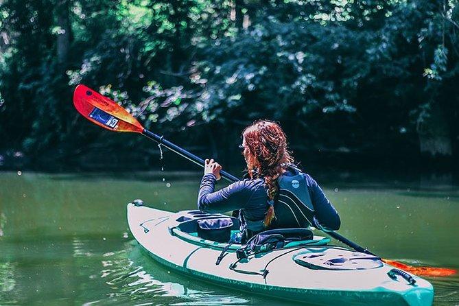 Big Creek Kayak Tour