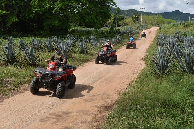 ATV's Tour to La Vinata Los Osuna and La Noria pueblo señorial