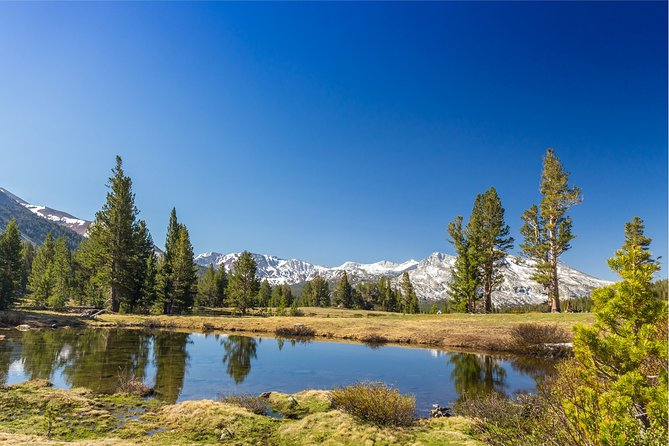 Yosemite National Park High Country Tour