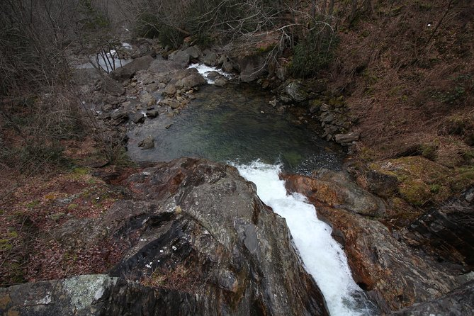 Blue Ridge Parkway & Waterfall Hike - Private Tour From Asheville