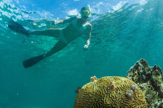 St. John Remote Location Snorkeling by Powerboat with Lunch & Open Bar - Westin
