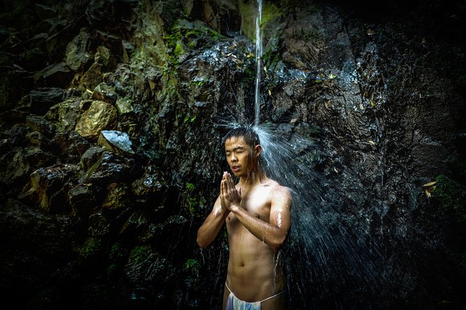 Forest bathe in Kyoto's Sacred Mountain (Online experience)