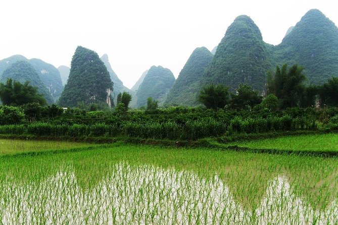 Private Day Tour in Yangshuo: Shilihualang, Xingping Li River Boat, and Lunch