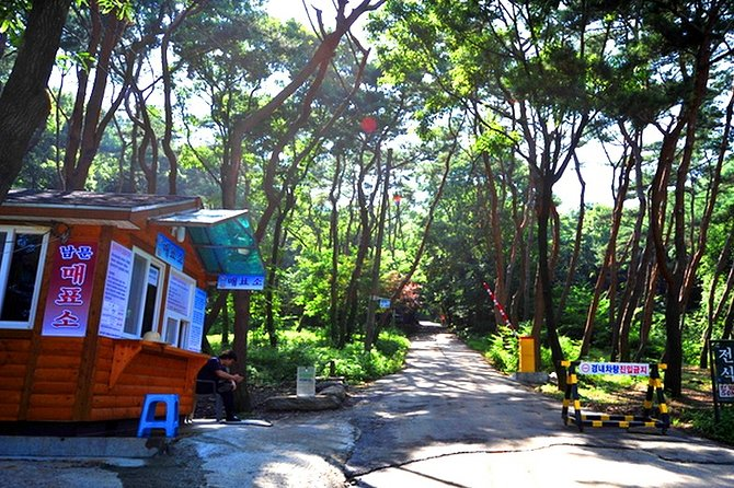 Ganghwado Island Private Day Tour with Peace Observatory+Joyang Bangjik Cafe