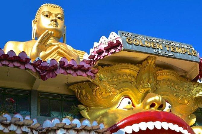 Sigiriya & Dambulla Treat to the Eyes & Soul - Day Tour