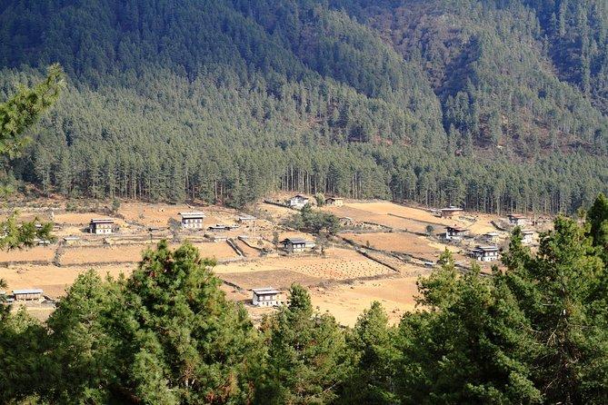 Romantic tour in Wangdue Phodrang