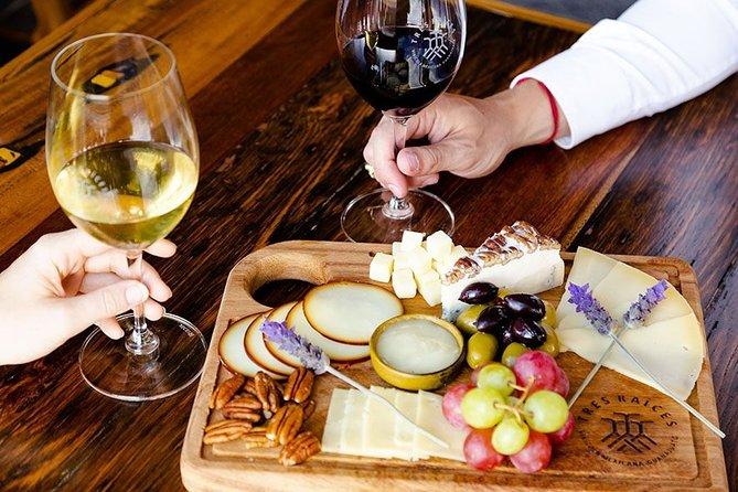 Tasting Pairing of 5 Wines with Food