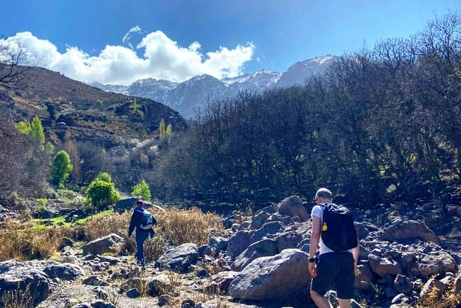 Marrakech : Atlas Mountains Private Day Trip with Lunch & Hiking
