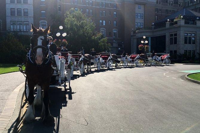 Beacon Hill Park Horse-Drawn Carriage Tour