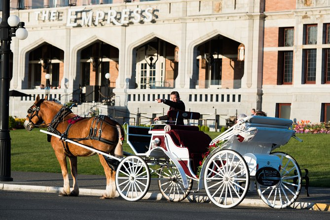 Deluxe Horse-Drawn Carriage Tour of Victoria