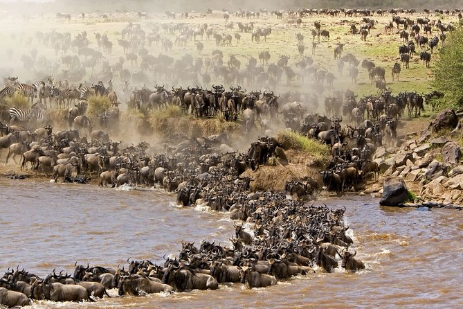 7Days Wildebeest Migration Safari - Tarangire, Serengeti and Ngorongoro.