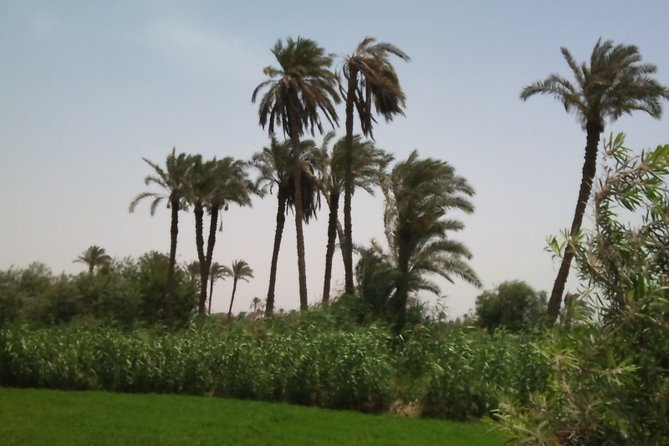 Cairo City Break in Tour 3 Days - 2 Nights at 5* Hotels Or similar Hotel 5*)