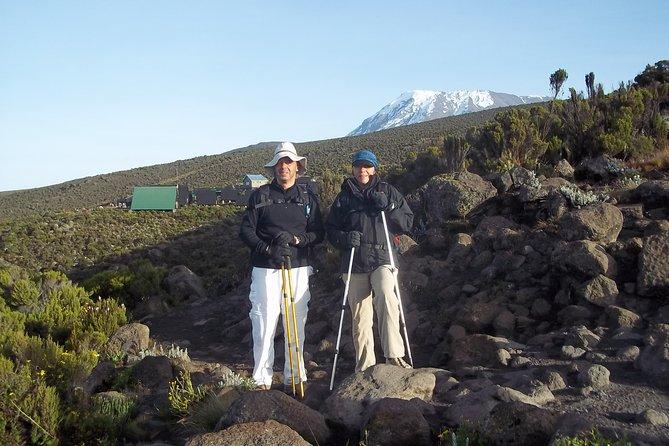 5 Days Kilimanjaro Marangu Route Trekking