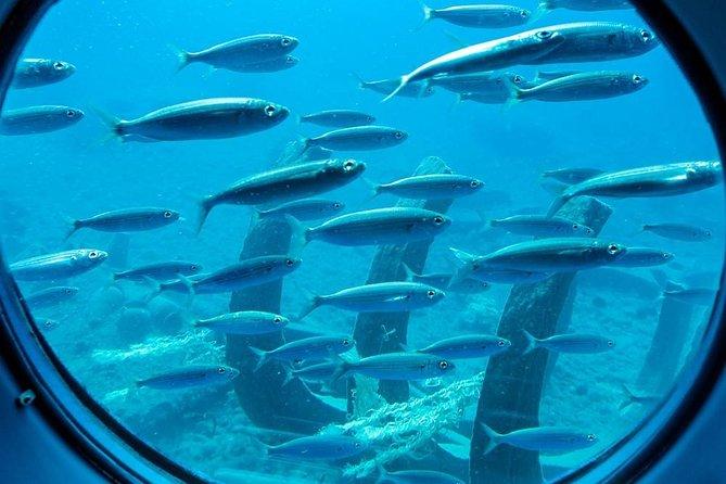 Sinbad Submarine Tour under the Red Sea in Hurghada