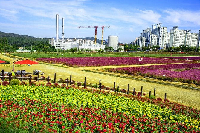 Romantic Tour in Yangzhou