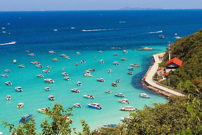 Coral Island (Koh Larn) & Sanctuary of Truth Private Tour from Pattaya –Full Day