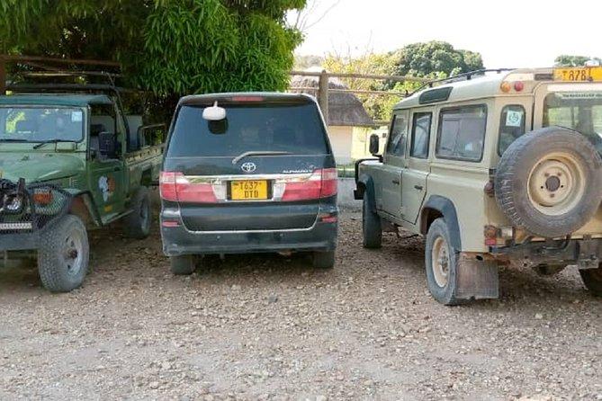 Mpanda airport pickup to Kipili (Lakeshore and Lupita Lodgres)