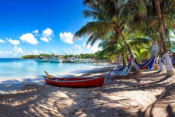 Shore Excursion: Roatan East West Private Half-Day Island Tour