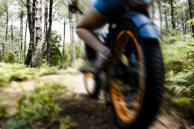 GOOD MORNING EXCURSION - La Landaise (Electric bikes - Classic bikes)