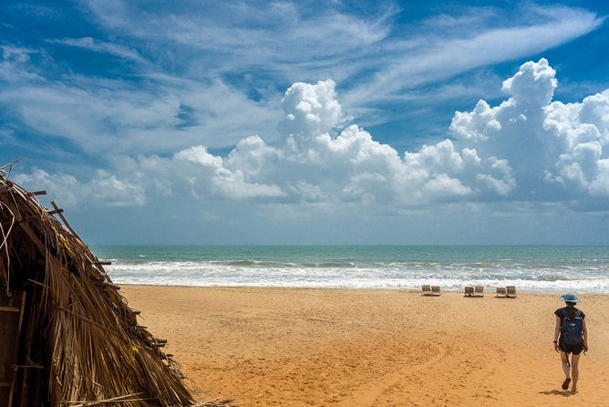 Full-Day Private City Tour of North Goa