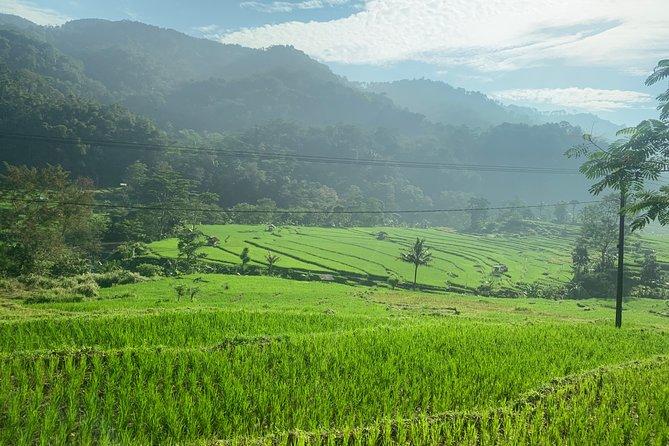 Transport Bali- Jawa
