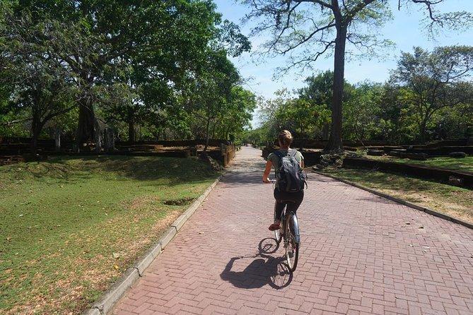Cycling Tour in Polonnaruwa Kingdom