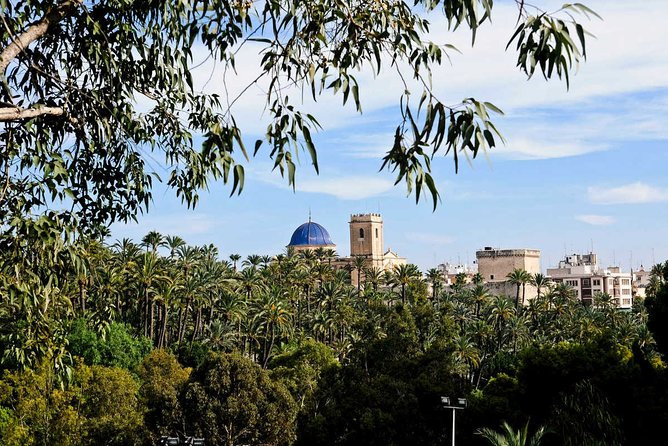 Experience the World Heritage City of Elche private tour